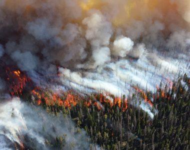 Oregon wildfire resources