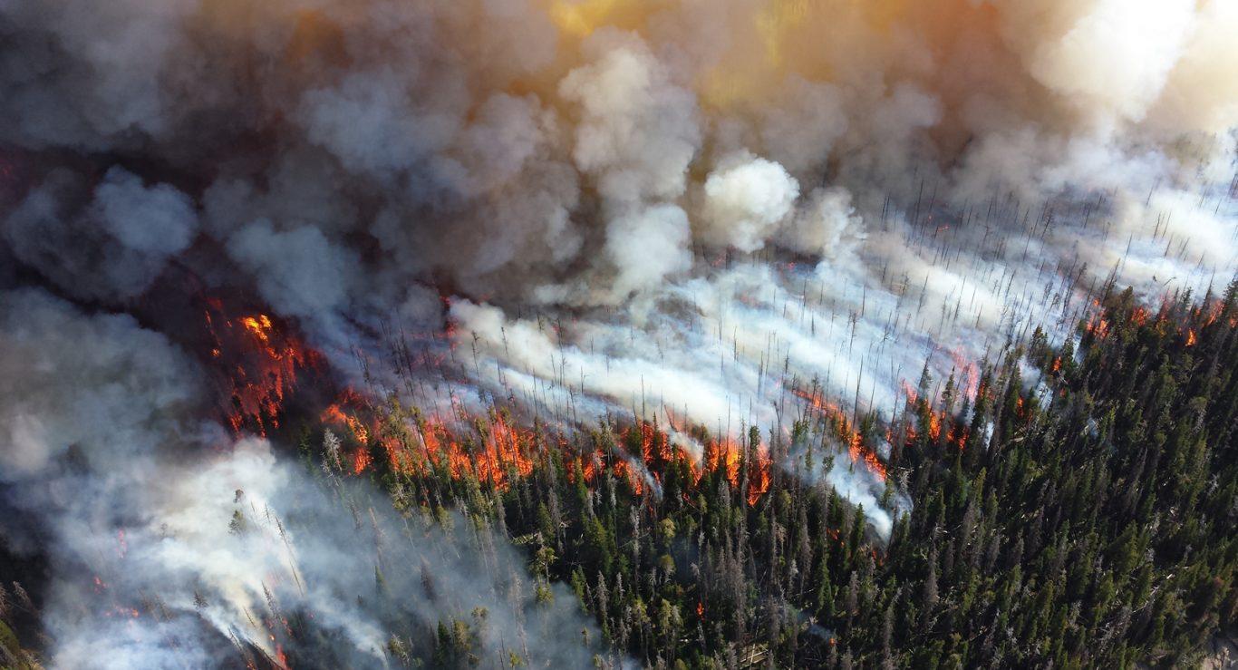 WEB_AME_Wildfire_Public-Domain_pxhere